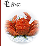 Haired crab